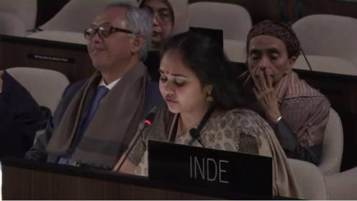 Ananya Agarwal - Indian Representative at UNESCO HQ